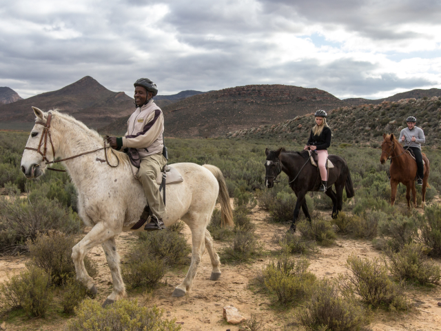 Horse Riding Safari | Cape Adventure Zone