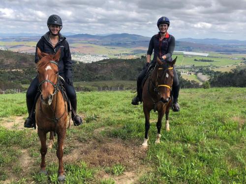 Stellenbosch Horse Riding | Cape Adventure Zone